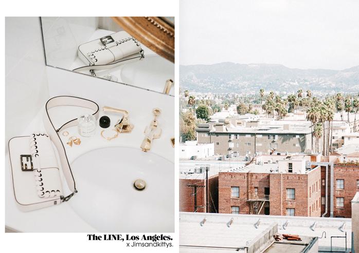 The-Line-Los-Angeles-California-Jimsandkittys