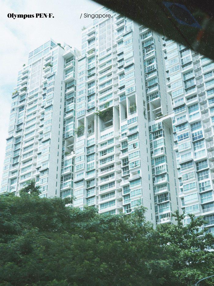 Olympus-PEN-F-Clan-Singapore-Jimsandkittys-ion-orchard